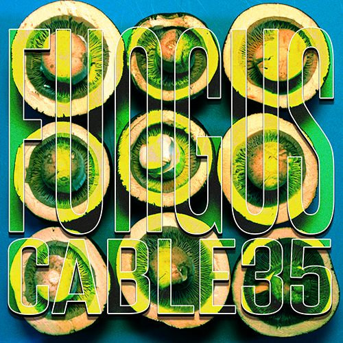 Cable 35 - Fungus EP, Album Cover