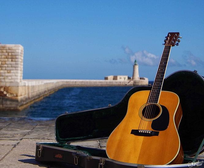 martin guitars online