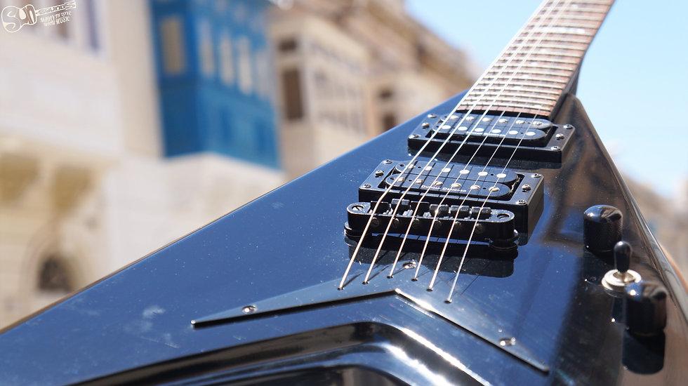 LTD V-100, Bass Guitar