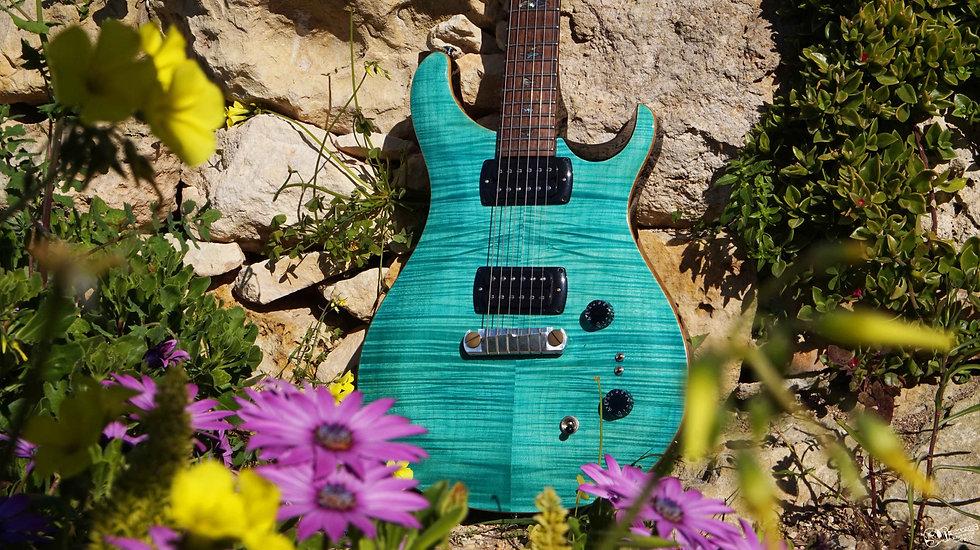 PRS SE Paul's Guitar online