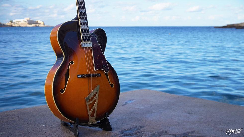 D'Angelico Excel EXL-1 Jazz Guitar | 2005