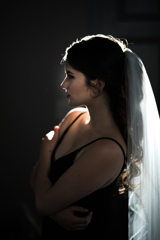 Bella Donna Bridal Portrait Kansas City Silhouette