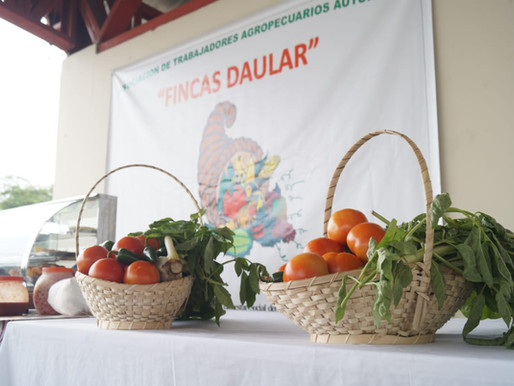 La Asociación Fincas Daular, ya consiguió nuevamente la activación de su vida jurídica.