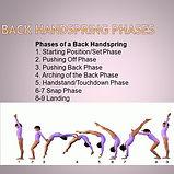 handspring phases.jpg