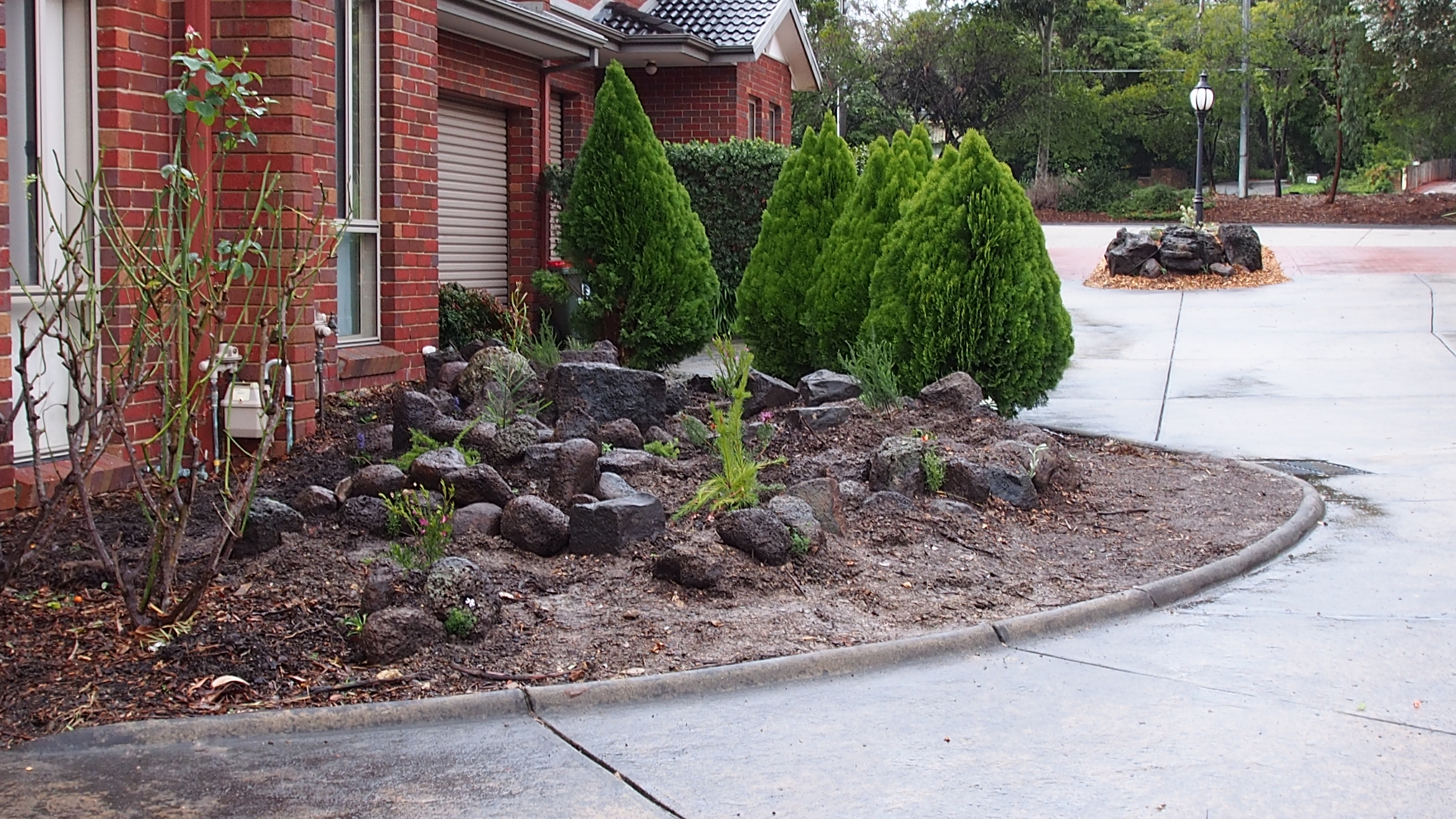 Immature circular rockery garden