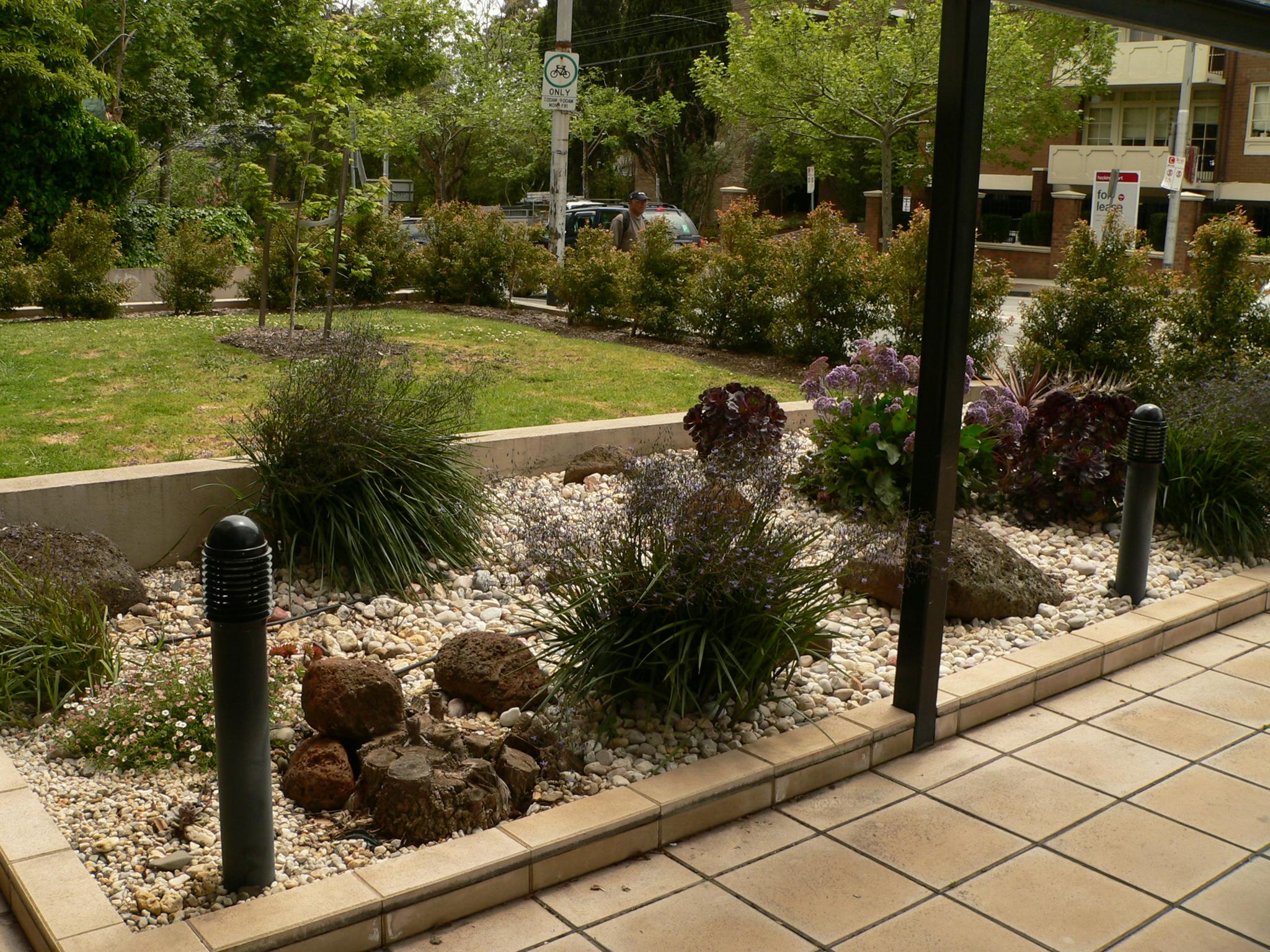 Maturing rock garden landscaping
