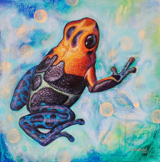 """""""Red and Blue Poison Dart-Frog"""""""