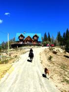 Horseback riding home