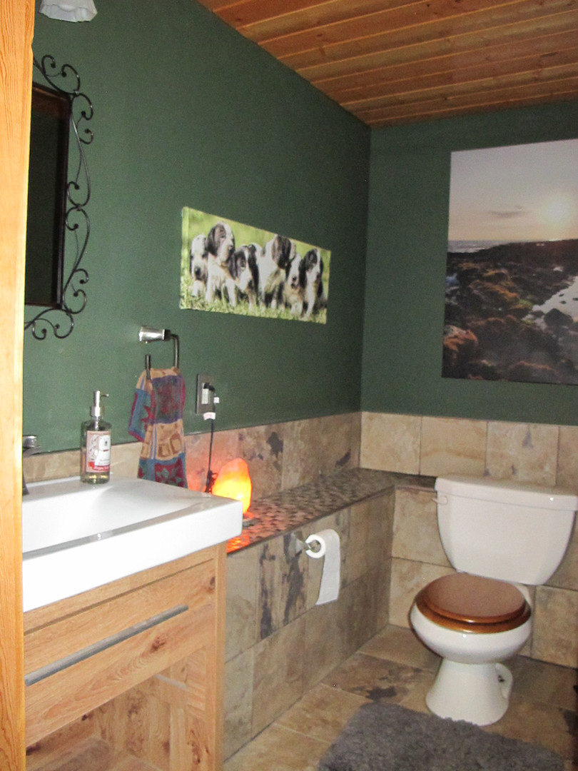 New renovated bathroom downstairs Skinne