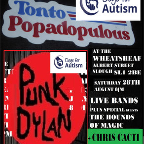 Punk Dylan and friends raise money for autism charity at Slough event - The Wheatsheaf.