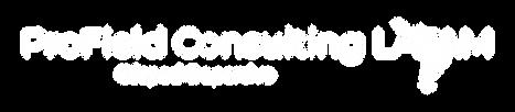 ProField Consulting LATAM-logo-white (1)