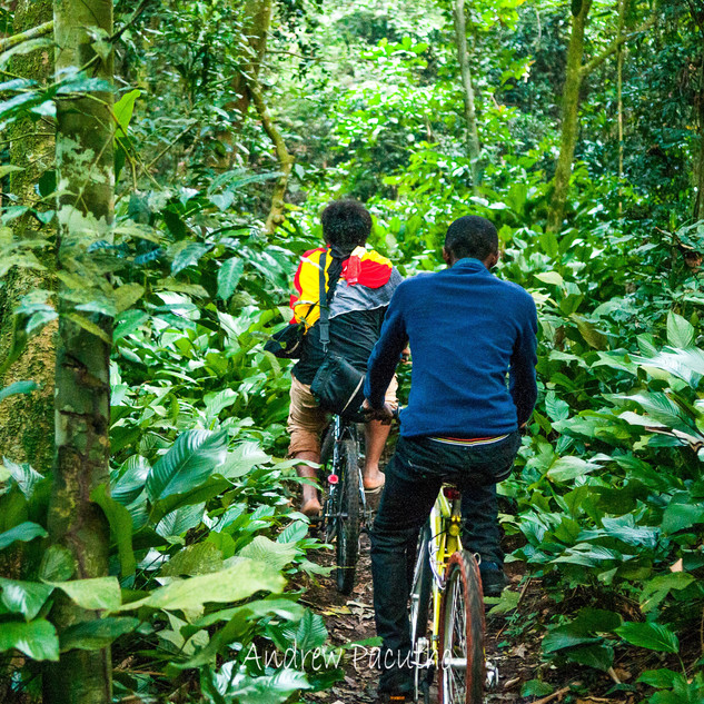 Pipes _ Raymond Mujuni chasing the sunri