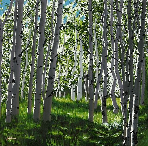"""Black Birch..."" CANVAS PRINT     $390 - $820CAD"