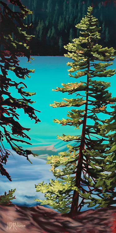 """Little Tree"" CANVAS PRINT     $360 - $680CAD"