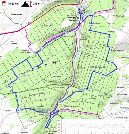 Montigny-les-Vaucouleurs