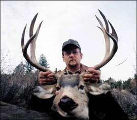 mule-deer-b4-2005-41.jpg