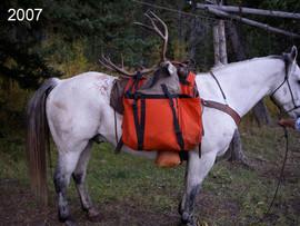 mule-deer-hunt2007-26.jpg