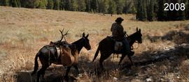 mule-deer-hunt2008-10.jpg