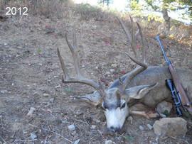 mule-deer-hunt2012-41.jpg