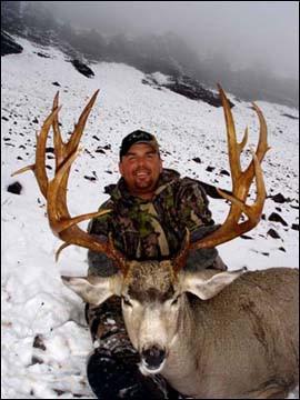 mule-deer-b4-2005-46.jpg