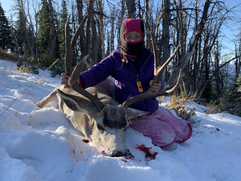 2019 deer 16.HEIC