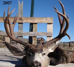 mule-deer-hunt2007-10.jpg
