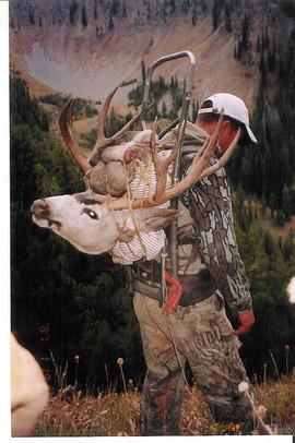 mule-deer-b4-2005-06.jpg