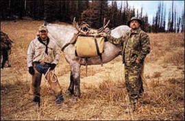 mule-deer-b4-2005-21.jpg