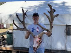 2019 deer 1.HEIC
