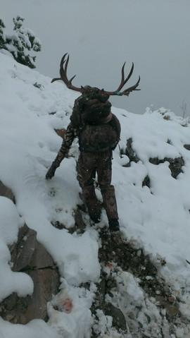 mule-deer-hunt2013-36.jpg