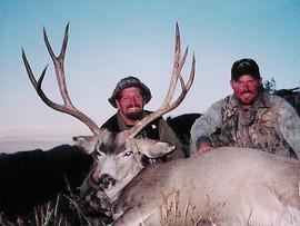mule-deer-b4-2005-05.jpg