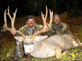 mule-deer-b4-2005-50.jpg