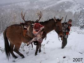 mule-deer-hunt2007-24.jpg