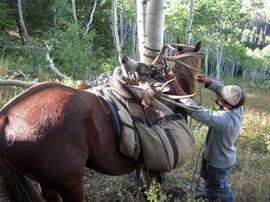 mule-deer-hunt2013-24.jpg