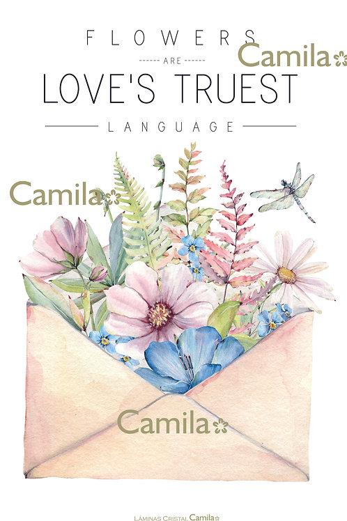 Love Truest C054