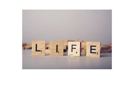 LIFE LE 41