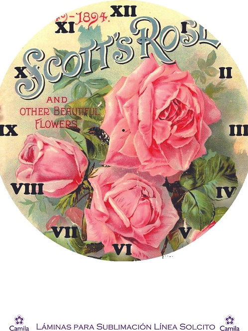 RELOJ SCOTT ROSES  A4 cod S039