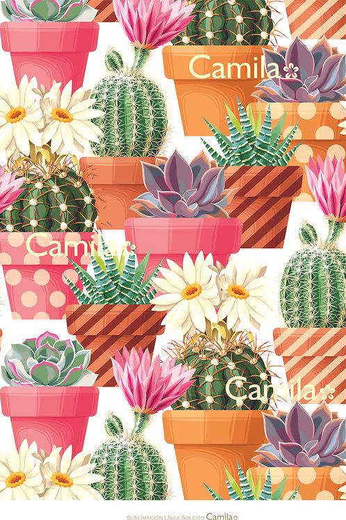 Fondo Macetas con Cactus y Suculentas S3057