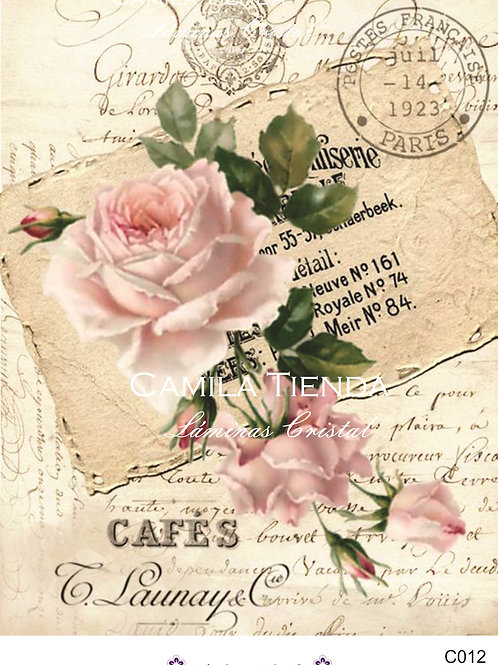 ROSA Y CARTAS A4 C012