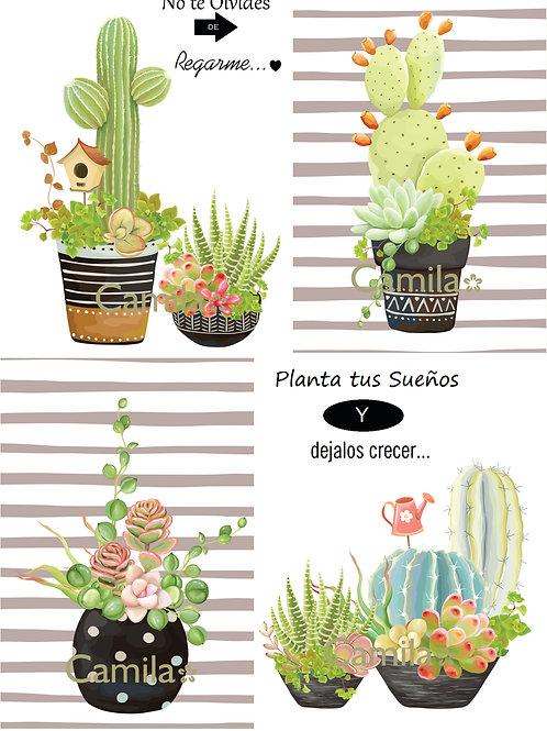 Planta tus Sueños A4 D 225