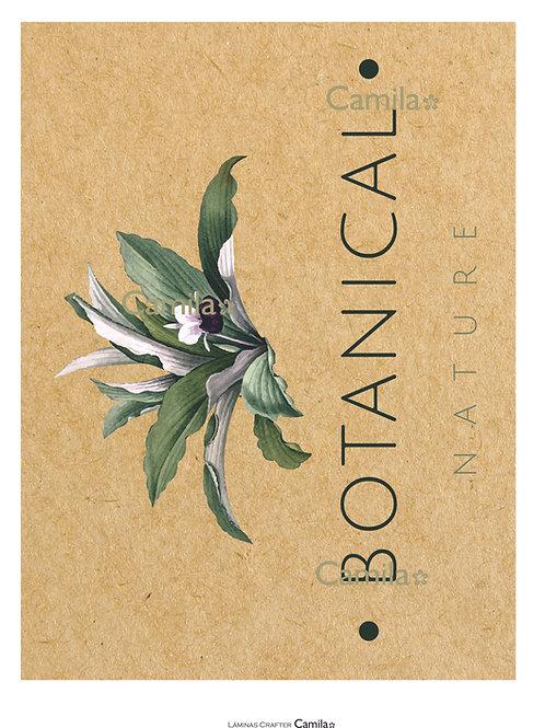 Botanical Nature CF128
