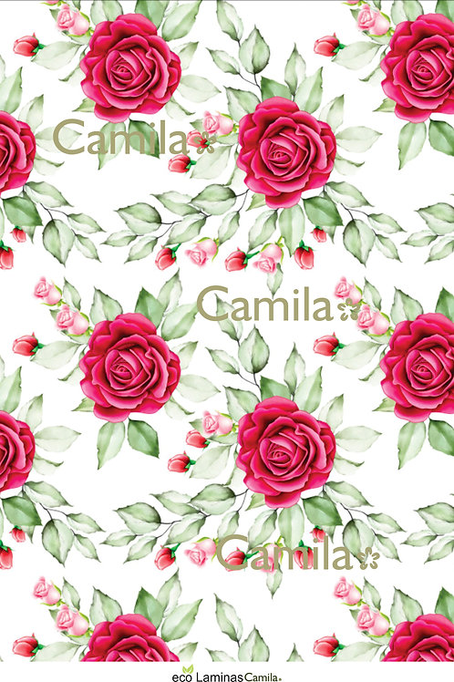 ROSAS Y PIMPOLLOS A4 E050