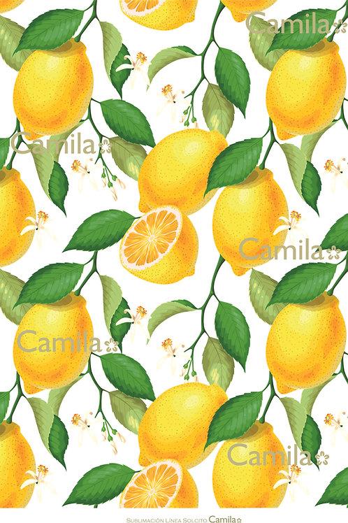 Fondo Limones S369