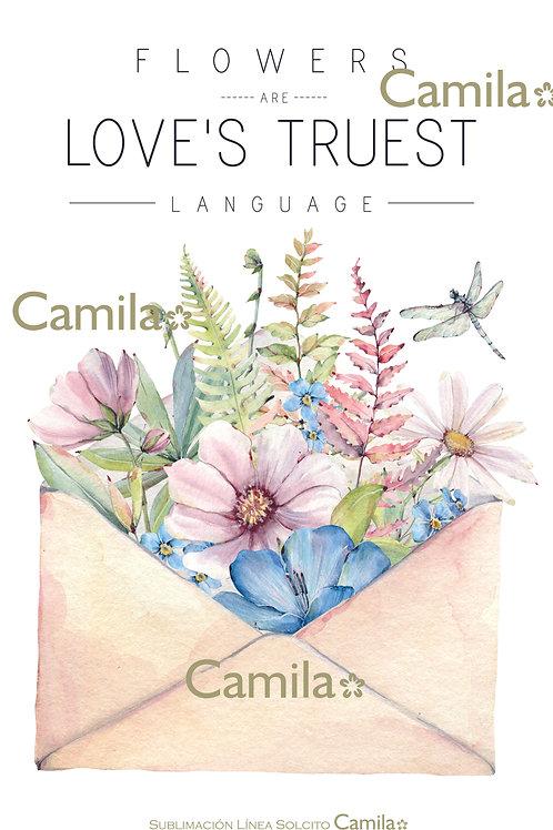 Love Truest S376