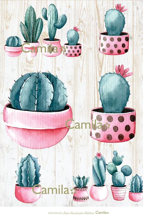 Lìnea Sweet - Centrales Cactus