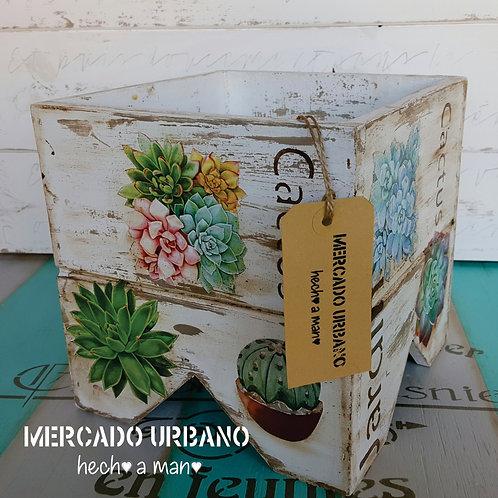 MACETERO 100% Cactus y Suculentas