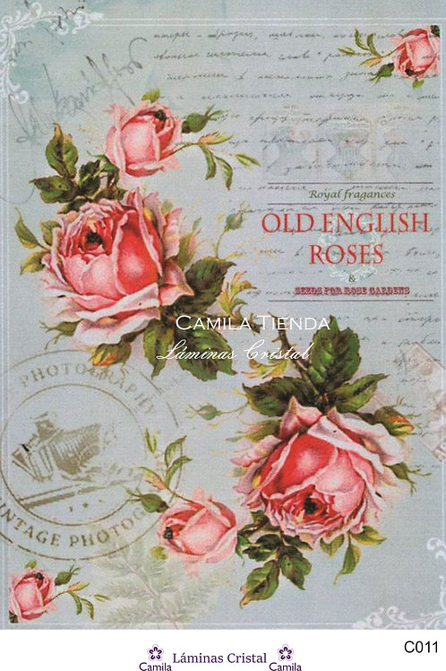 OLD ENGLISH ROSES A4 C011