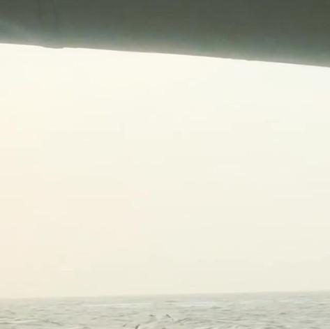 Sea Adventure
