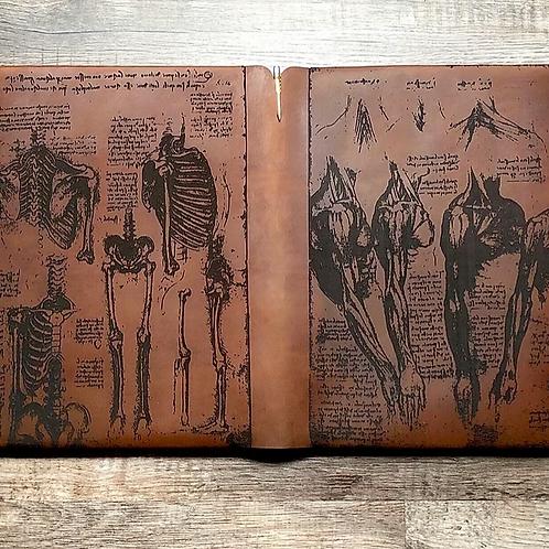 Upgrade to Da Vinci Anatomy-Travel Cut #18890