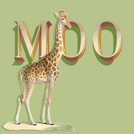 giraffe:moo copy.jpg